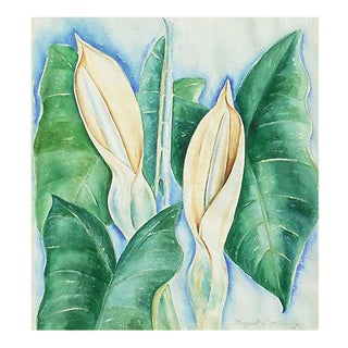 'Hawaiian Lilies' by Margaret McNerney, 1975; Modernist Botanical Study For Sale