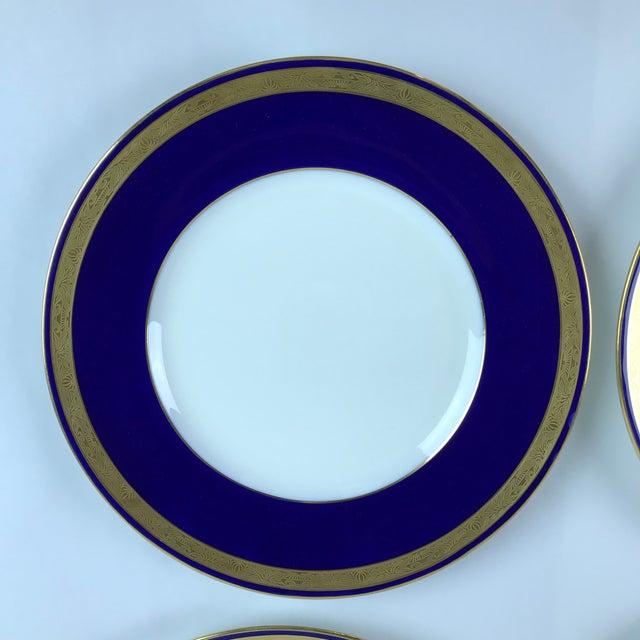 Tiffany Gold & Cobalt Blue Rimmed Dinner Plates - Set of 6 For Sale - Image 10 of 13