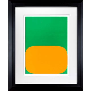 Ellsworth Kelly Original Framed Lithograph For Sale