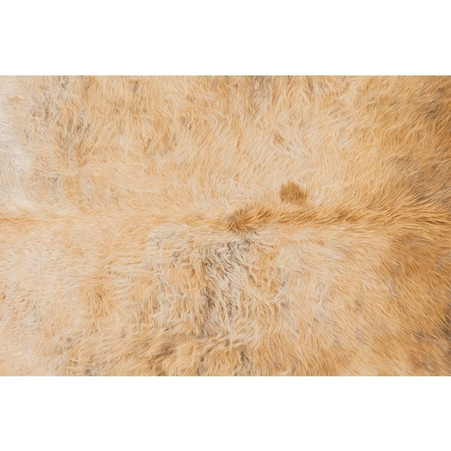 """blonde cowhide Brazil approximately 78"""" h x 90"""" w size + markings may vary slightly from cowhide pictured Measurements are..."""