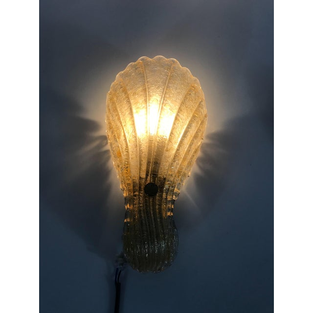 1960s Mid-Century Modern Shell Shaped Murano Glass Wall Lamps by Fischer Leuchten, Germany- a Pair For Sale - Image 10 of 12