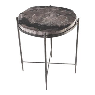 Organic Modern Petrified Wood Top W Iron Stand Accent Table For Sale