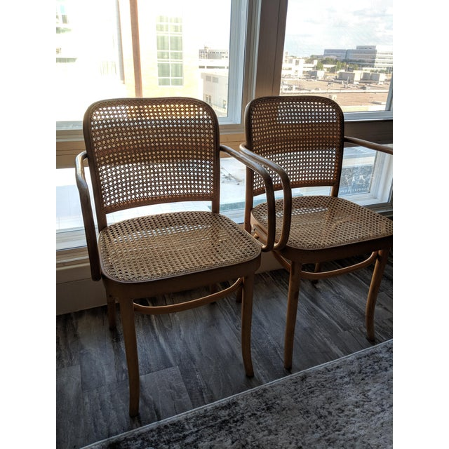 Beech Set of Mid-Century Modern Josef Hoffmann Prague Chairs For Sale - Image 7 of 10