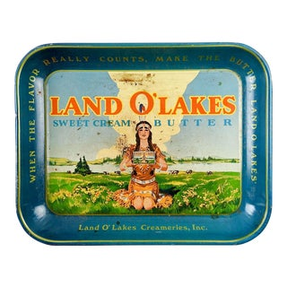 Vintage Land O'Lakes Metal Lithographic Tray For Sale