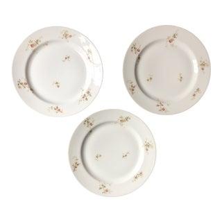 1920s Haviland Limoges Floral Spray Plates - Set of 3 - Set of 3 For Sale