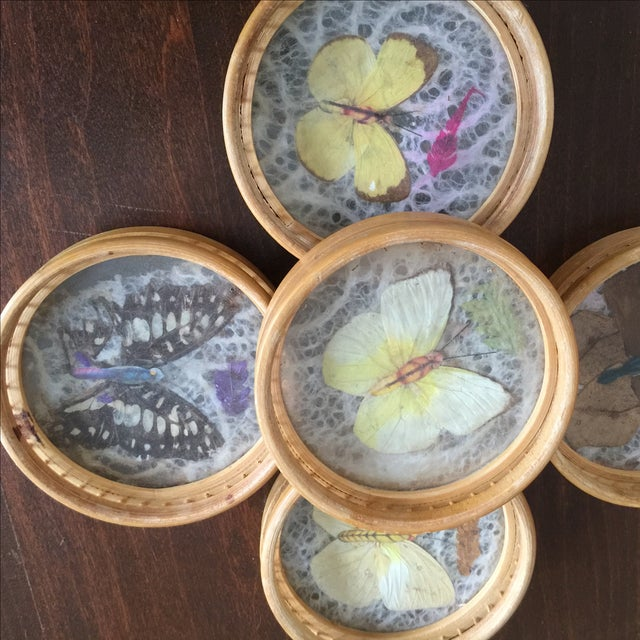 Vintage Butterfly Coasters - Set of 5 - Image 3 of 11
