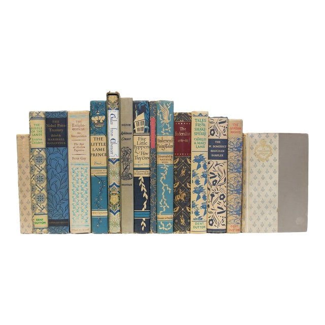 Vintage Blue Willow Books - Set of 15 For Sale