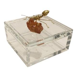 John Richard Ant and Quartz on Crystal Box