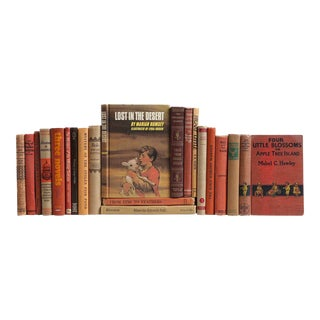 Vintage Children's Novels, S/20