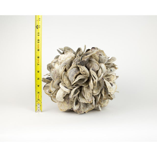 Large Natural Oyster Shell Sphere Sculpture For Sale - Image 9 of 10