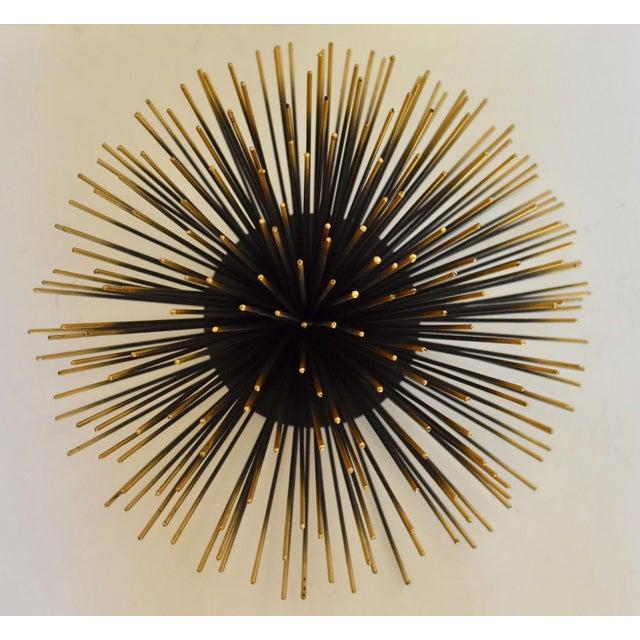 Fabulous Sea Urchin Wall Decor | Chairish FN88