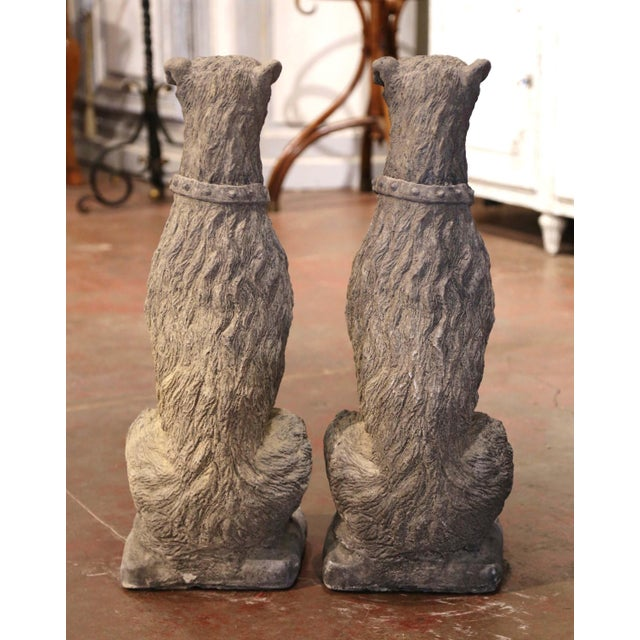 Vintage French Weathered Carved Stone Statuary Scottish Deer Hounds - a Pair For Sale - Image 10 of 11