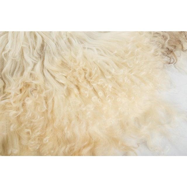"""2010's Modern Natural Sheepskin Pelt Rug - 2'0""""x3'5"""" For Sale - Image 4 of 6"""