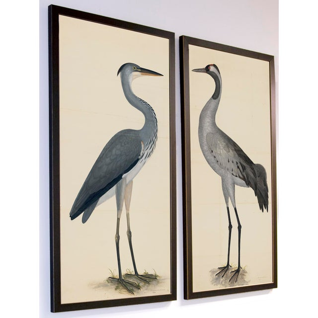 Blue Birds Prints With Roma Moulding - a Pair For Sale - Image 9 of 12