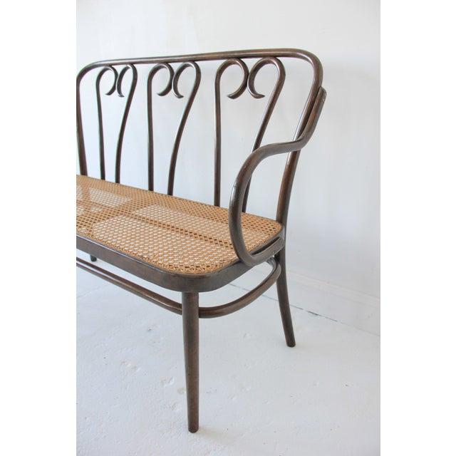 Vintage Bentwood & Cane Bench - Image 3 of 6