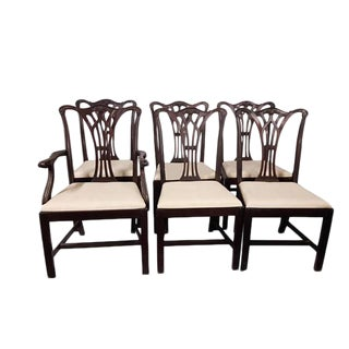 Antique Mahogany Dining Chairs - Set of 6