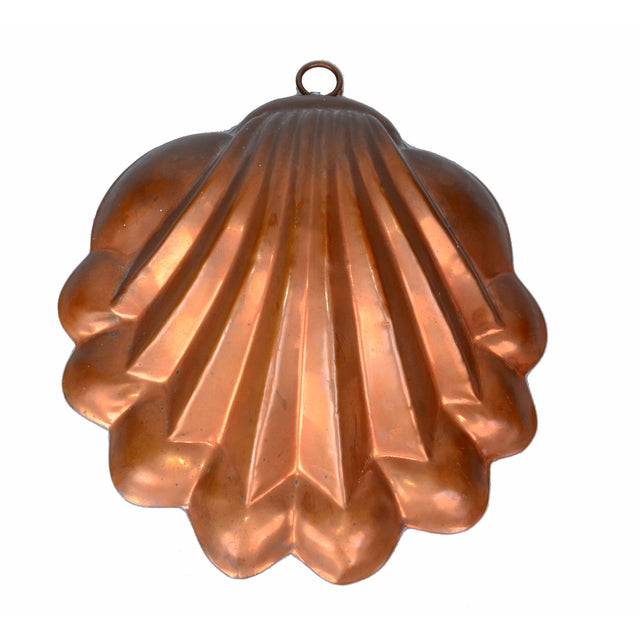 Copper Seashell Bunt Cake Wall Hanging For Sale
