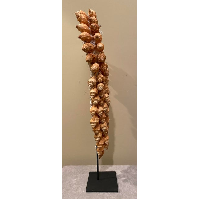 Asian Style Seashell Necklace on Stand For Sale - Image 4 of 12