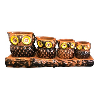 Vintage Ceramic Owl Measuring Cup Set With Log Wall Rack For Sale