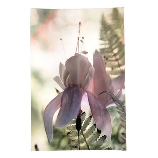 Floral Still Life Color Photo by Garo For Sale