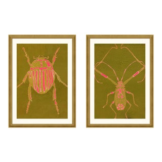 Beetle & Bug Diptych, Bright Series no. 5 by Jessica Molnar in Gold Frame, Small Art Print For Sale
