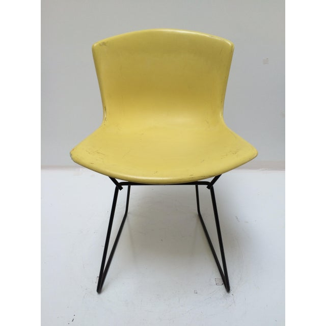 Knoll Bertoia Fiberglass Side Chair Yellow For Sale - Image 10 of 11