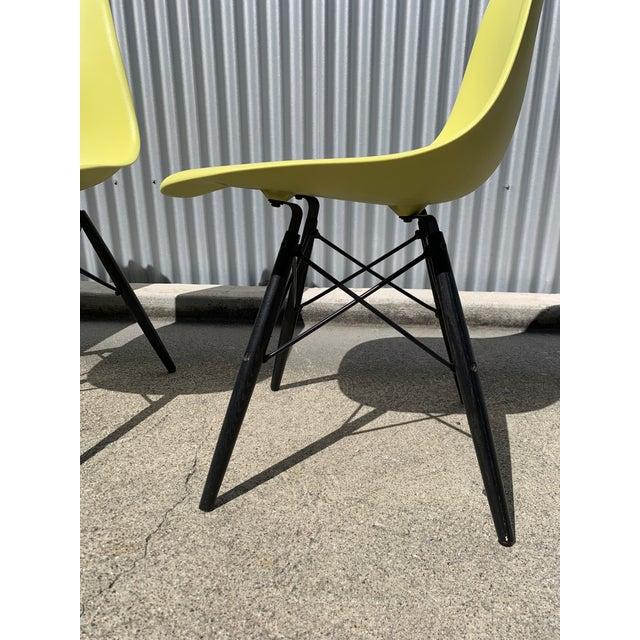 Herman Miller Charles Eames Herman Miller Lime Dowel Leg Chairs- Set of 4 For Sale - Image 4 of 8