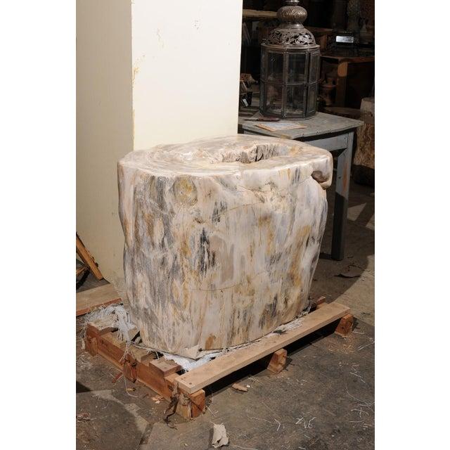 Early 21st Century Impressively Large Petrified Wood Table Base For Sale - Image 5 of 12