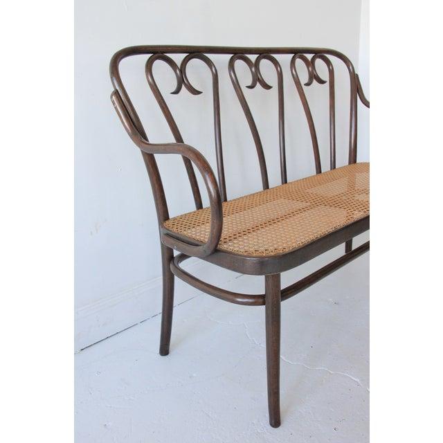 Vintage Bentwood & Cane Bench - Image 2 of 6