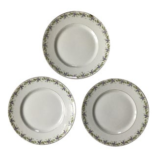 Bernardaud Limoges Dinner Plates - Set of 3 For Sale