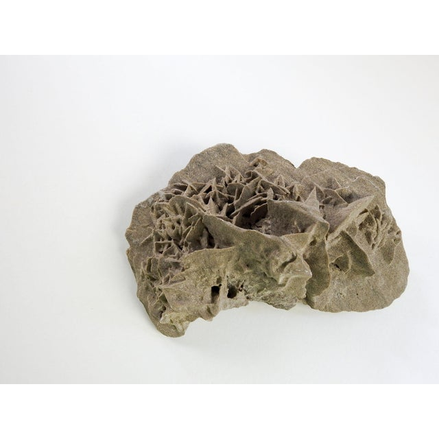 Contemporary Desert Rose Mineral Specimen For Sale - Image 3 of 4