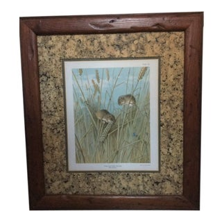 """""""Harvest Mouse"""" Lithograph by Archibald Thorburn Signed, 1904 For Sale"""