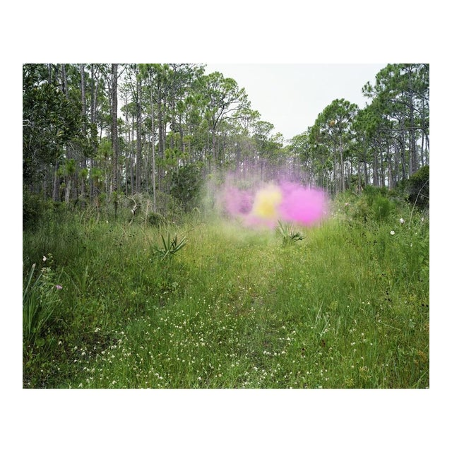 Jeremy Chandler, Smokescreen for the Southern Summer, 2014 For Sale