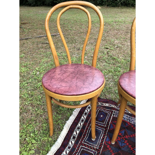 Vintage Mid Century Thonet Style Cafe Chairs- Set of 4 For Sale In Charleston - Image 6 of 10