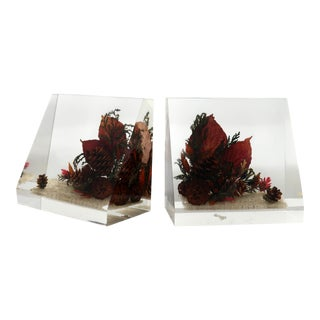 Vintage Clearfloat Lucite Bookends For Sale