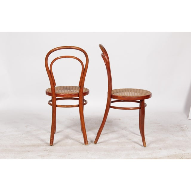 1910 Thonet Model 14 Bentwood Chairs - A Pair - Image 3 of 10