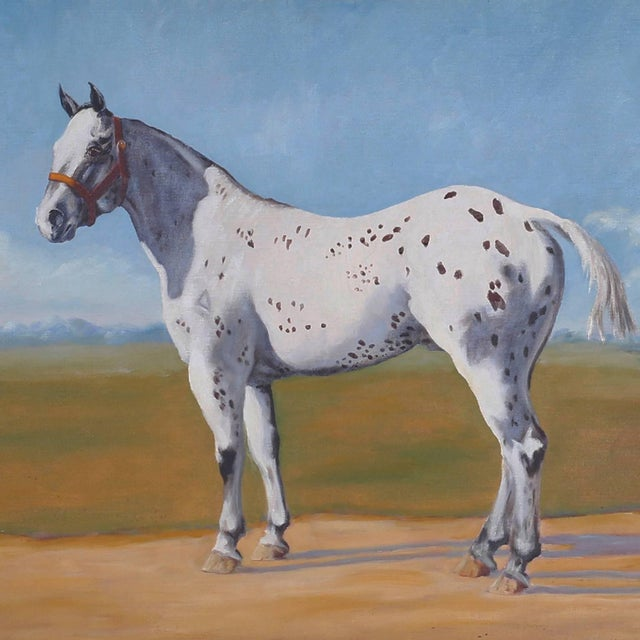 Oil painting of a horse or appaloosa against a blue sky and western landscape. Expertly painted in a bold modern style.