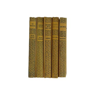 1925 French Books - Set of 5 For Sale
