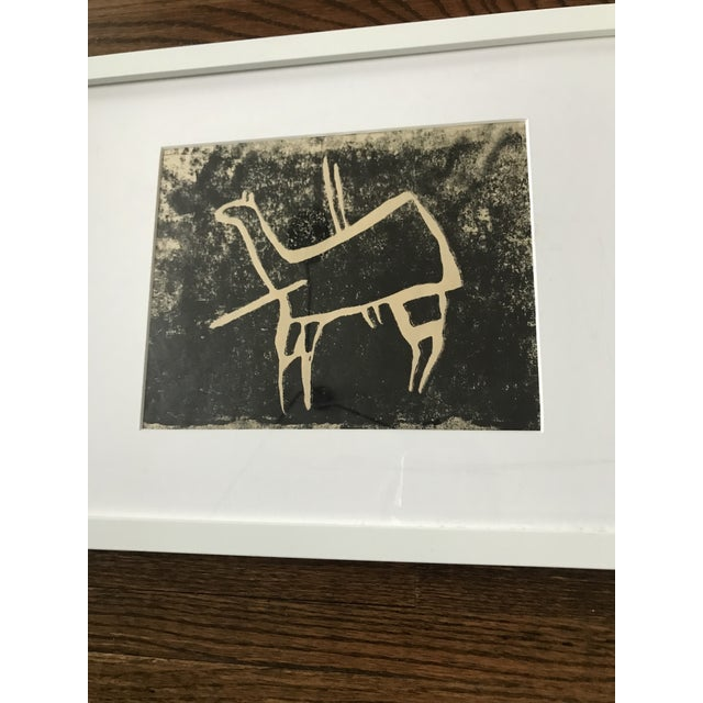 Vintage wood block animal print, matted and framed. Print is ivory and black, frame and mat are white. Plexi on frame has...