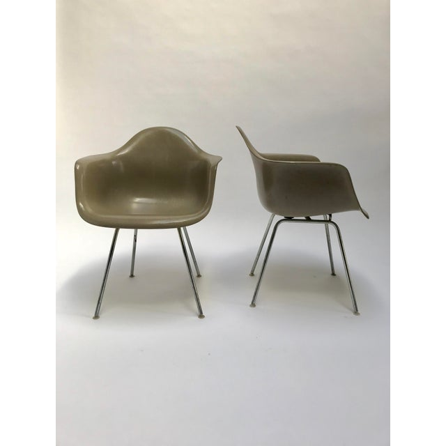 Pair of vintage Eames fiberglass armchairs for Herman Miller. 1950's productions. No Herman Miller embossment on the...