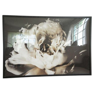 Ashley Woodson Bailey Large Framed Flower Photograph For Sale