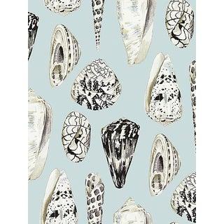 Sample, Scalamandre Coquina, Capri Wallpaper For Sale