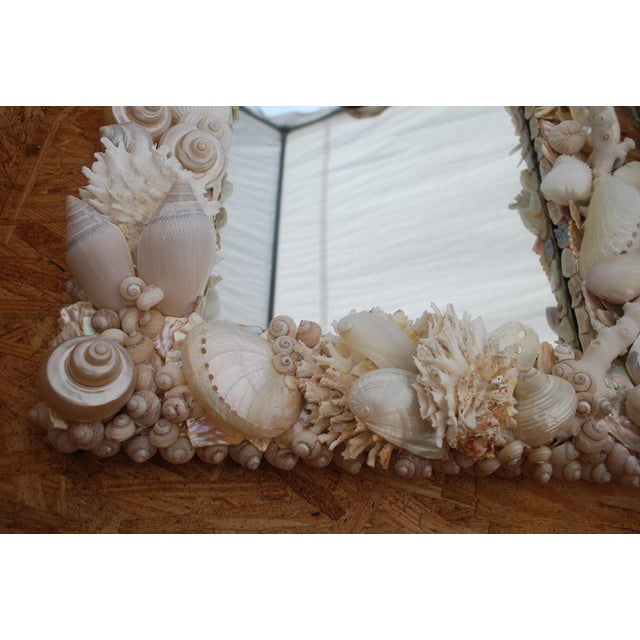 Custom White Seashell and Coral Mirror For Sale - Image 4 of 9