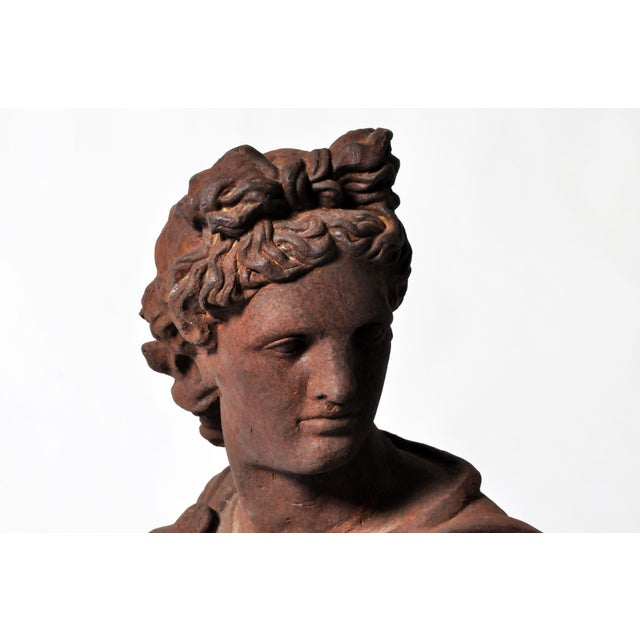 Iron Bust of Apollo Belvedere - Image 9 of 11