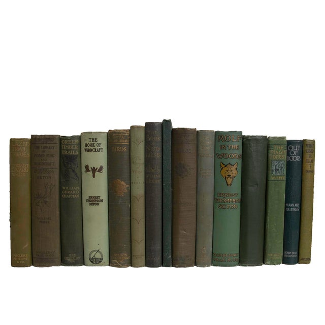 Into the Pines Book Set - Set of 15 For Sale - Image 4 of 4