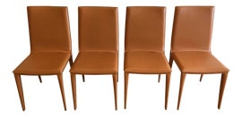 Image of Dining Chairs in New York