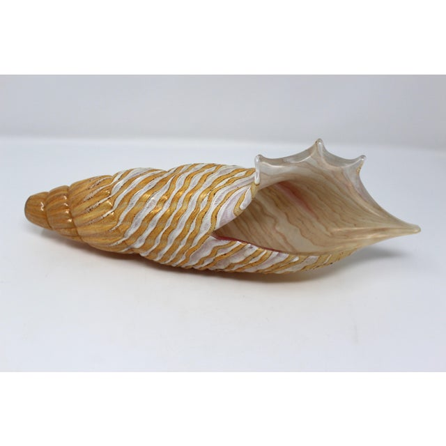 This is a very rare and beautiful piece of Murano Glass. The seashell has lovely coloring and is a great accent piece.