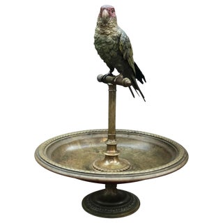 Austrian Bronze Bird and Perch For Sale