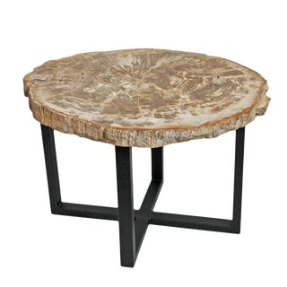 Petrified Wood Slice Side Table