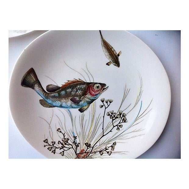 Johnson Brothers English Fish Plates - Set of 8 For Sale - Image 4 of 5